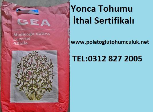 Yonca-Tohumu.jpg